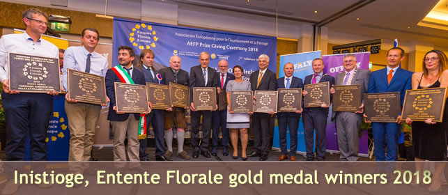 Inistioge Entente Florale gold medal winners 2018